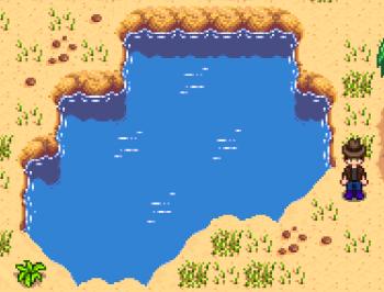 Desert Pool.png