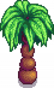 Palm Stage 3.png